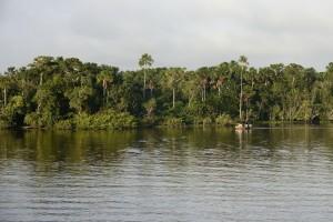 3682 BRK Bootchen vor Uferwald